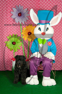 easter_paw_naturals_2014 021