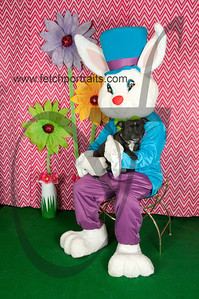 easter_paw_naturals_2014 012
