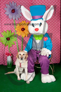 easter_paw_naturals_2014 053