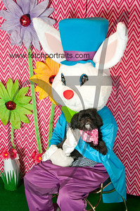 easter_paw_naturals_2014 041