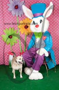 easter_paw_naturals_2014 059