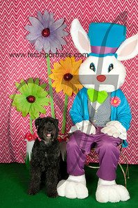 easter_paw_naturals_2014 024