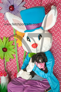 easter_paw_naturals_2014 045