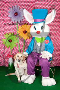 easter_paw_naturals_2014 057