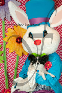 easter_paw_naturals_2014 034