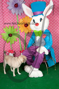 easter_paw_naturals_2014 060