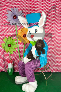 easter_paw_naturals_2014 026