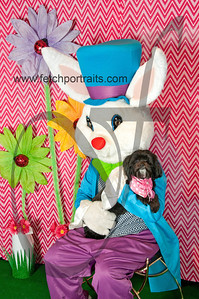 easter_paw_naturals_2014 037