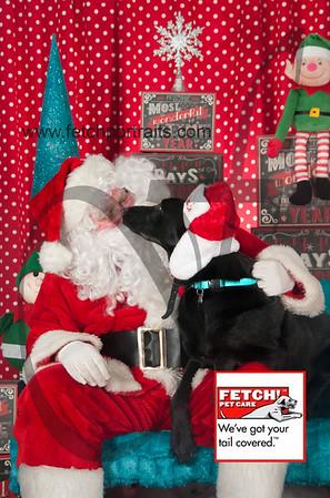 Santa 2015 Bark n Bites and Streeterville 150_1