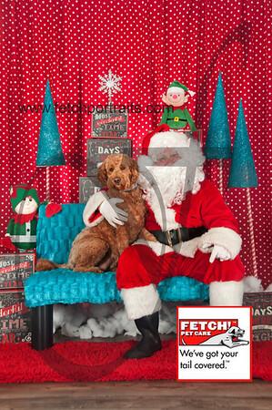 Santa 2015 Bark n Bites and Streeterville 046_1