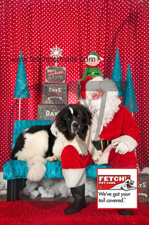 Santa 2015 Bark n Bites and Streeterville 206_1