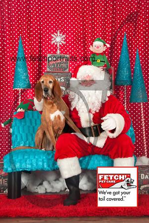 Santa 2015 Bark n Bites and Streeterville 076_1