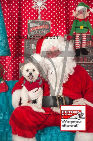 Santa 2015 Bark n Bites and Streeterville 124_1