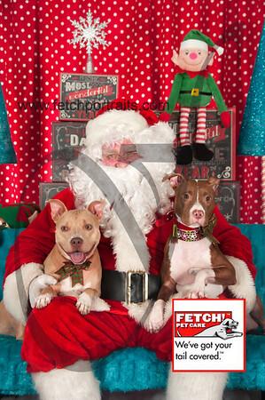 Santa 2015 Bark n Bites and Streeterville 312_1