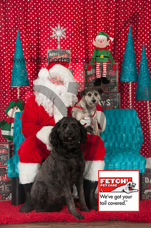 Santa 2015 Bark n Bites and Streeterville 018