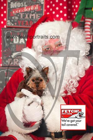 Santa 2015 Bark n Bites and Streeterville 093_1