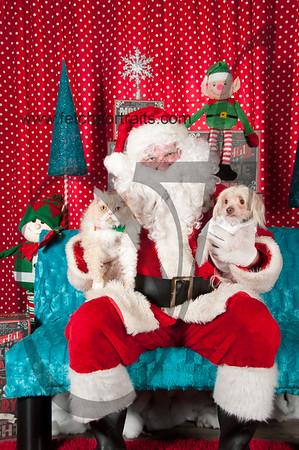 Santa 2015 Krisers Park Ridge 026
