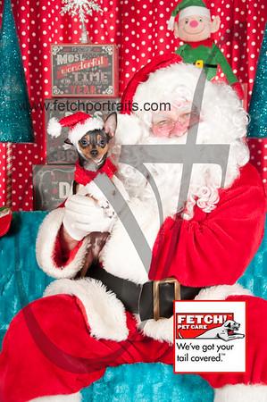 Santa 2015 Bark n Bites and Streeterville 367