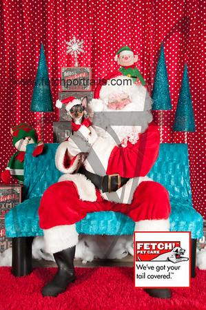 Santa 2015 Bark n Bites and Streeterville 366