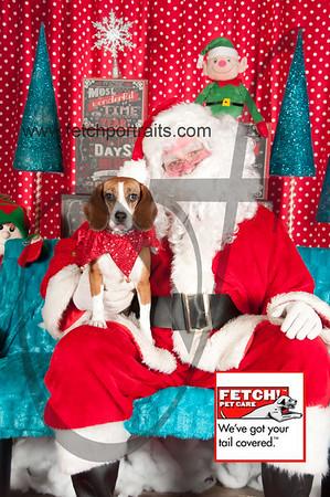 Santa 2015 Bark n Bites and Streeterville 394