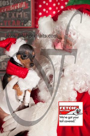 Santa 2015 Bark n Bites and Streeterville 376