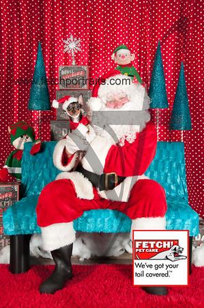 Santa 2015 Bark n Bites and Streeterville 365