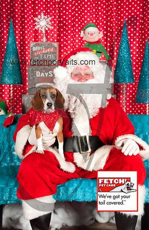 Santa 2015 Bark n Bites and Streeterville 392