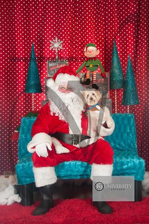 Santa 2015 Paw Naturals 008
