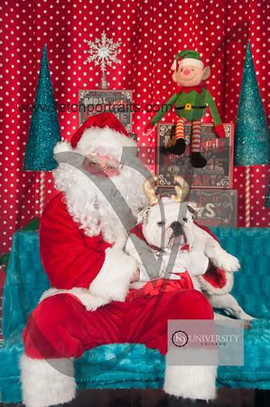 Santa 2015 Paw Naturals 053