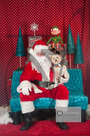 Santa 2015 Paw Naturals 007