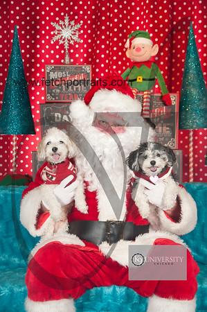 Santa 2015 Paw Naturals 038