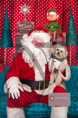 Santa 2015 Paw Naturals 127