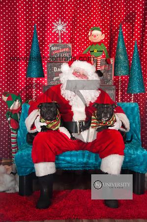 Santa 2015 Paw Naturals 215