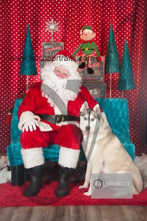 Santa 2015 Paw Naturals 056