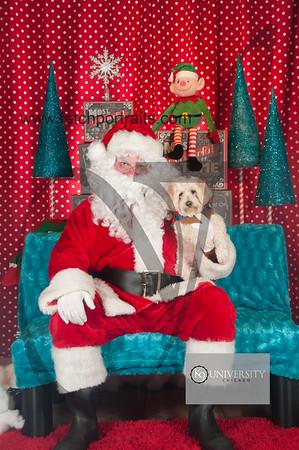 Santa 2015 Paw Naturals 010