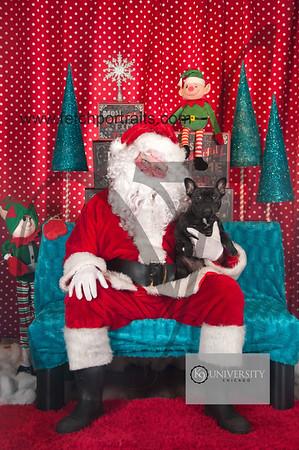 Santa 2015 Paw Naturals 146