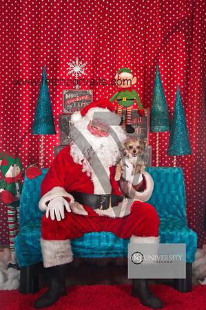 Santa 2015 Paw Naturals 160