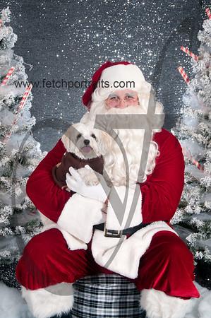dogaholics_santa_2016 051