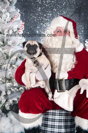 dogaholics_santa_2016 656