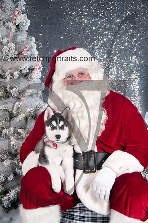 dogaholics_santa_2016 178