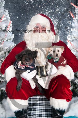 dogaholics_santa_2016 534