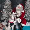 dogaholics_santa_2016 563