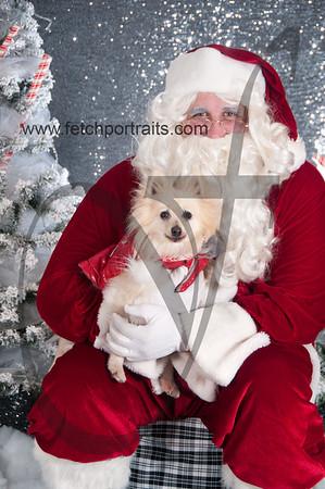 dogaholics_santa_2016 549