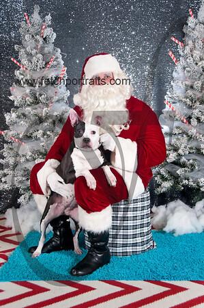 dogaholics_santa_2016 324