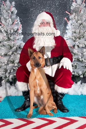 dogaholics_santa_2016 520