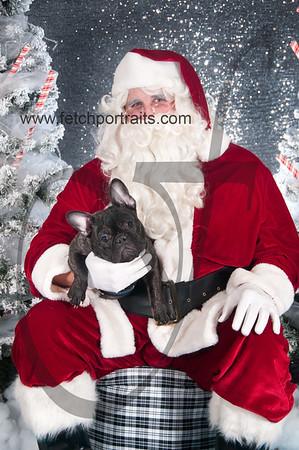 dogaholics_santa_2016 788