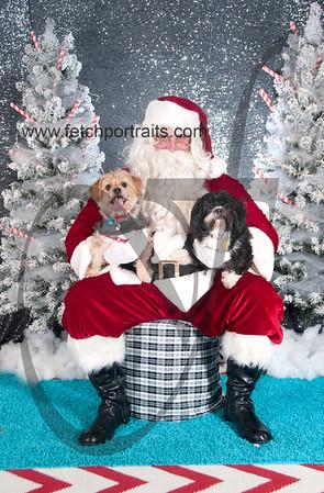 dogaholics_santa_2016 613
