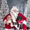 dogaholics_santa_2016 221
