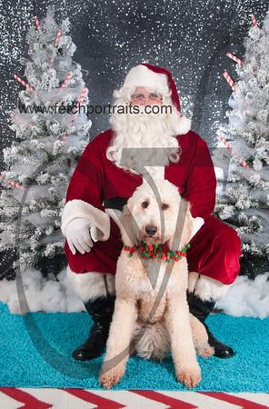 dogaholics_santa_2016 804