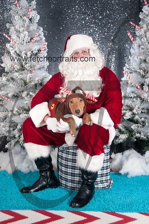 dogaholics_santa_2016 260